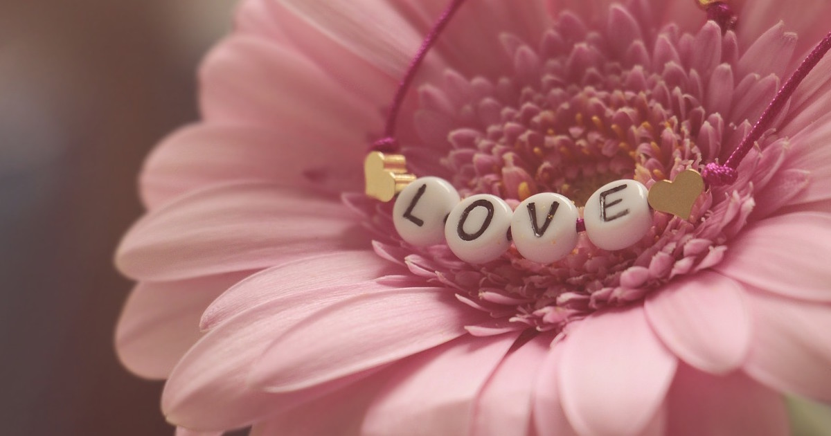 pink flower - radio wellness