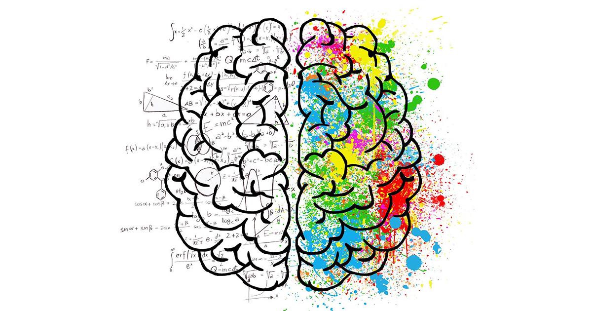 Cervello - Fonte immagine Elisa Riva - Pixabay