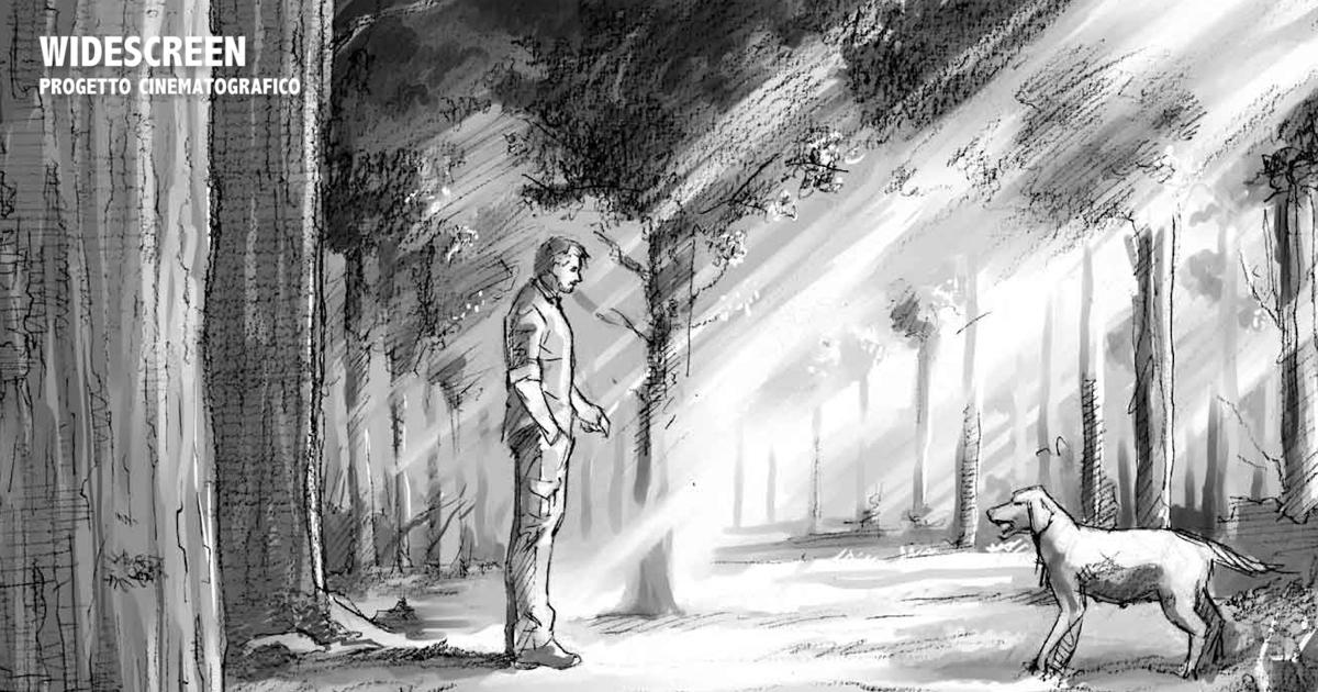 storyboard - Widescreen di Michele Banzato